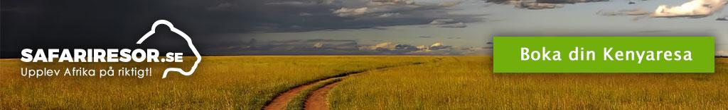 Väg i Kenya